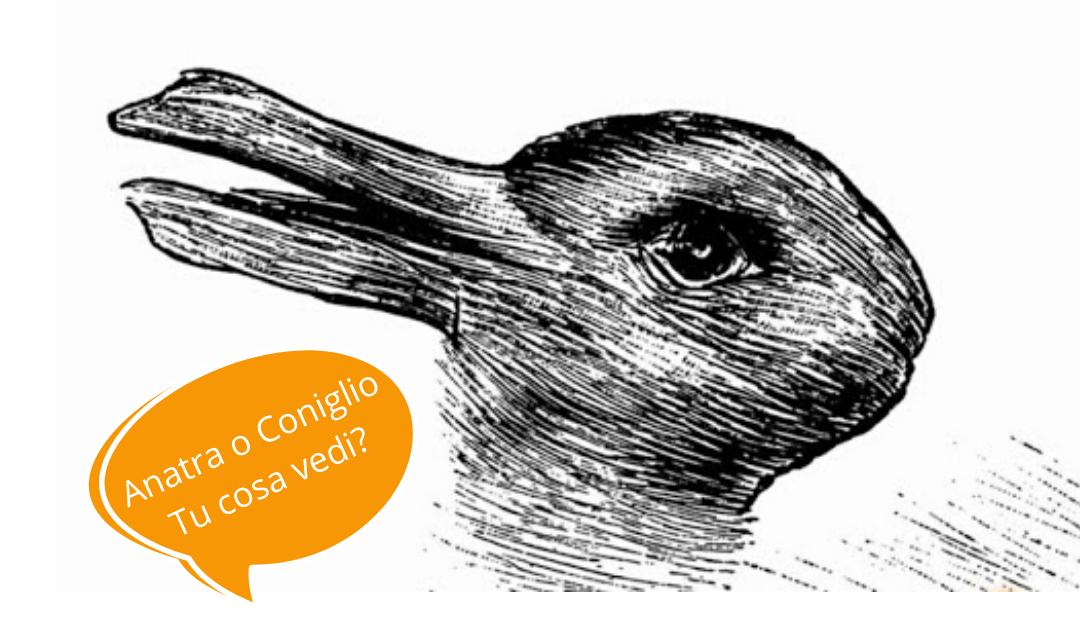 Anatra o Coniglio | Tu cosa Vedi?